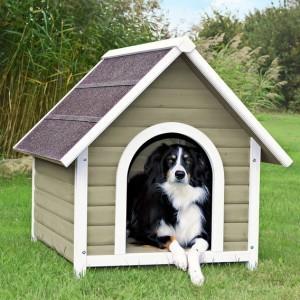 Nice-dog-kennel-300x300
